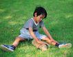 儿童宠物0059,儿童宠物,儿童,草地上 小男孩 抚摸兔子