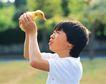 儿童宠物0086,儿童宠物,儿童,小鸭子