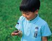 儿童宠物0093,儿童宠物,儿童,玩耍 幼年 儿童宠物