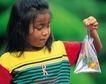 儿童宠物0098,儿童宠物,儿童,透明袋 金鱼 小女孩