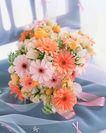 花艺摆设0469,花艺摆设,植物,