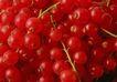 素材瓜果0097,素材瓜果,生活百科,红果 果肉 水果