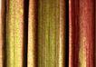 素材瓜果0137,素材瓜果,生活百科,