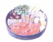 美食插图0082,美食插图,生活百科,