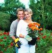 花园生活0010,花园生活,生活百科,园艺情侣 盆栽花朵