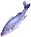 食材海鲜0039,食材海鲜,生活百科,