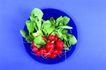 食物背景0036,食物背景,生活百科,樱桃 绿叶 果实