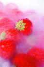 鲜味食物0054,鲜味食物,生活百科,草莓