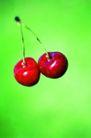 鲜味食物0061,鲜味食物,生活百科,樱桃