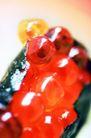 鲜味食物0081,鲜味食物,生活百科,