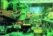 台北工业0170,台北工业,工业,绿色氛围