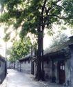 北京胡同0087,北京胡同,中华图片,