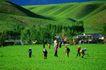新疆经济篇0120,新疆经济篇,中华图片,