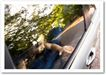 交通工具0065,交通工具,广告创意,车窗