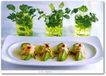 创意食品饮料0160,创意食品饮料,广告创意,青叶植物