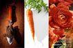 创意食品饮料0172,创意食品饮料,广告创意,花朵 铲子 红萝卜