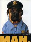 动物创意0019,动物创意,广告创意,创意动物 狗狗警察 幽默图片