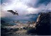 动物创意0020,动物创意,广告创意,飞鸟 山脉 山涧