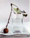最佳食品饮料广告0383,最佳食品饮料广告,广告创意,