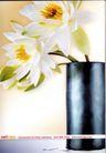花朵创意0007,花朵创意,广告创意,白色花瓣 圆筒花瓶
