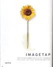 花朵创意0030,花朵创意,广告创意,一朵向日葵