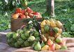 水果世界0145,水果世界,美食,