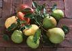 水果世界0150,水果世界,美食,