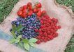 水果世界0172,水果世界,美食,