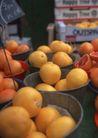 水果世界0177,水果世界,美食,新鲜水果 桔子