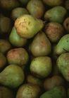 水果世界0189,水果世界,美食,香梨 梨子