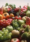 水果世界0190,水果世界,美食,新鲜水果