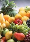 水果世界0193,水果世界,美食,