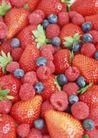 水果糕点0199,水果糕点,美食,