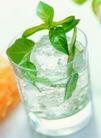 洋酒文化0055,洋酒文化,美食,
