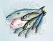 生鲜鱼肉菜0058,生鲜鱼肉菜,美食,