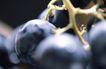 葡萄酒篇0021,葡萄酒篇,美食,葡萄