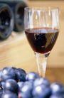 葡萄酒篇0048,葡萄酒篇,美食,