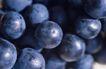 葡萄酒篇0049,葡萄酒篇,美食,