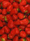 食品背景0062,食品背景,美食,鲜草莓