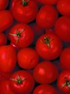 食品背景0093,食品背景,美食,水果 蕃茄 果蔬