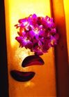 祈福0024,祈福,中国传统,一束花