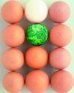 电子时代0025,电子时代,商业,鸡蛋