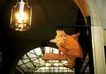 生活标识0032,生活标识,静物,灯光 吊灯 房屋