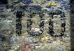 生活标识0038,生活标识,静物,