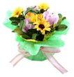 礼品包装0068,礼品包装,静物,鲜花