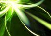 光之科技0072,光之科技,科技,