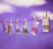 世界货币0487,世界货币,金融,