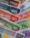 钱币种类0429,钱币种类,金融,