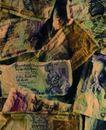 钱币种类0440,钱币种类,金融,
