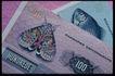货币大全0045,货币大全,金融,